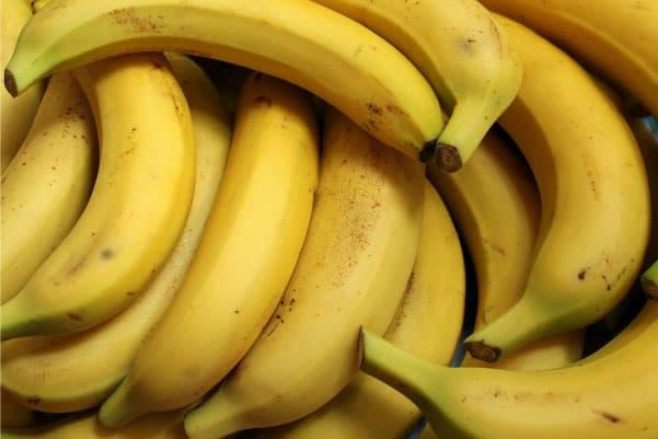 banana good for dog?