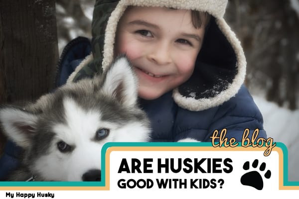 Are Huskies Good With Kids? Here's What Real Parents Say