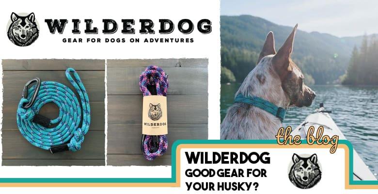 wilderdog banner