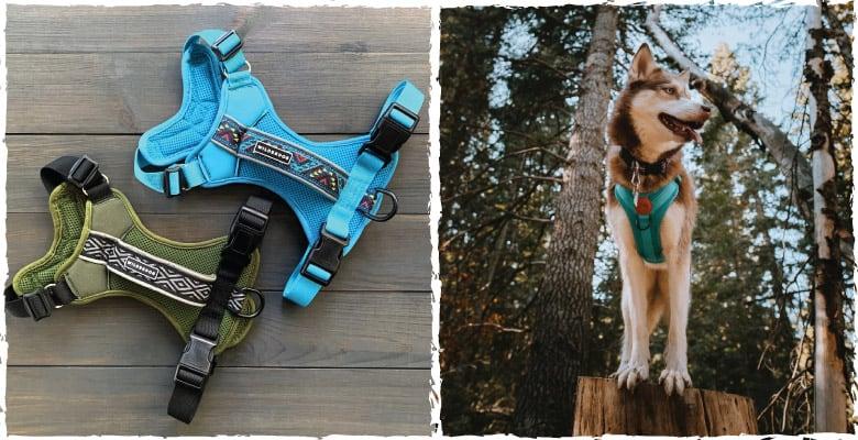 wilderdog harness