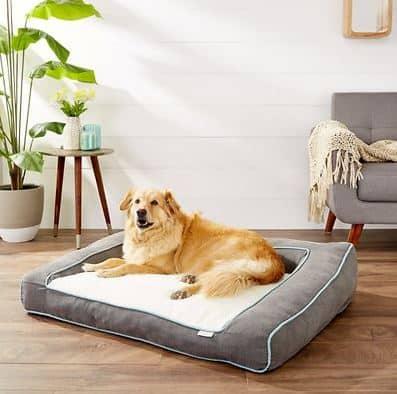 best dog bed for a husky