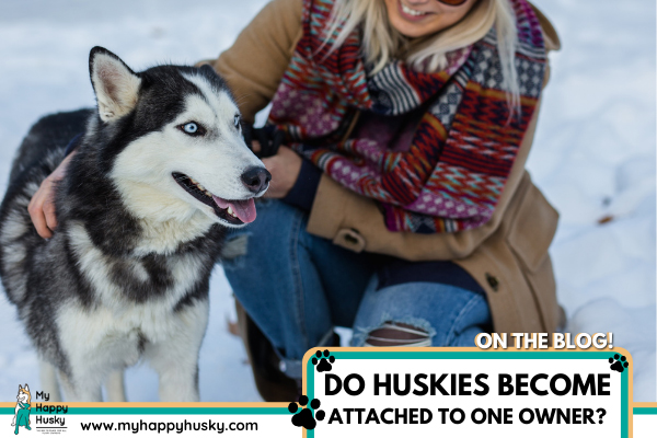 DO-HUSKIES-GET-ATTACHED-TO-ONE-OWNER.png